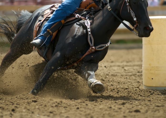 Enter Coors - Banquet Wrangler NFR Sweepstakes for a free trip to Las Vegas for the National Rodeo Finals