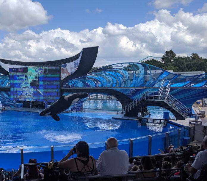 SeaWorld San Antonio theme park coupons