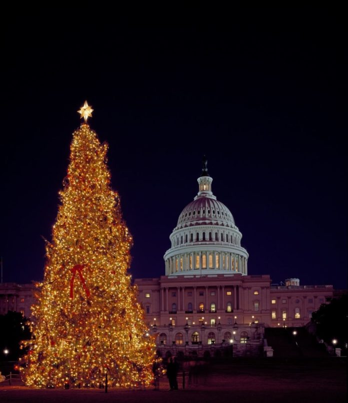 Discount price for Christmas Lights Tour in Washington, DC. See the Christmas trees & decorations of the White House, Library of Congress, Capital, Supreme Court, etc.