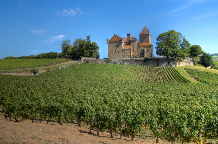 Win a vacation in Burgundy, France & get a Personalized Wine Tour & Cellar Tasting