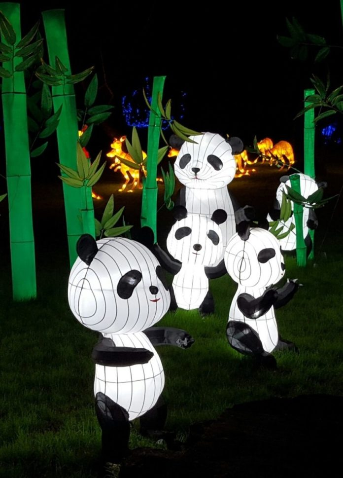 Coupon code for NYC Winter Lantern Festival in Staten Island