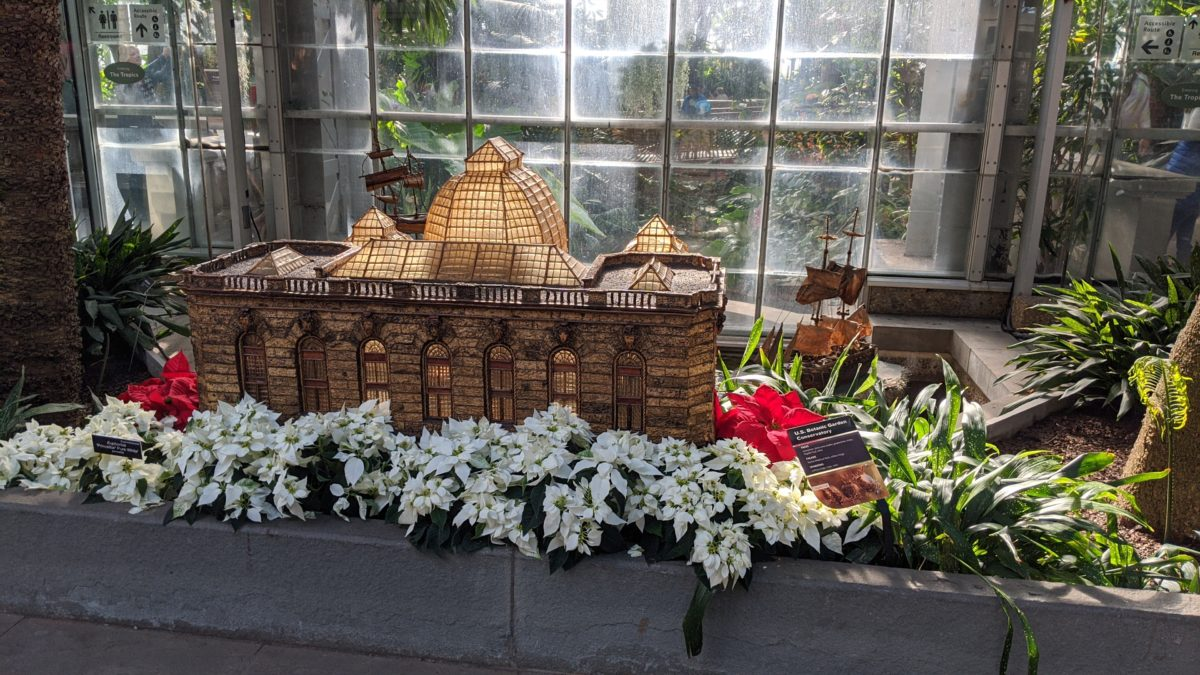 See Washington DC monuments & landmarks in the Conservatory at United States Botanic Gardens