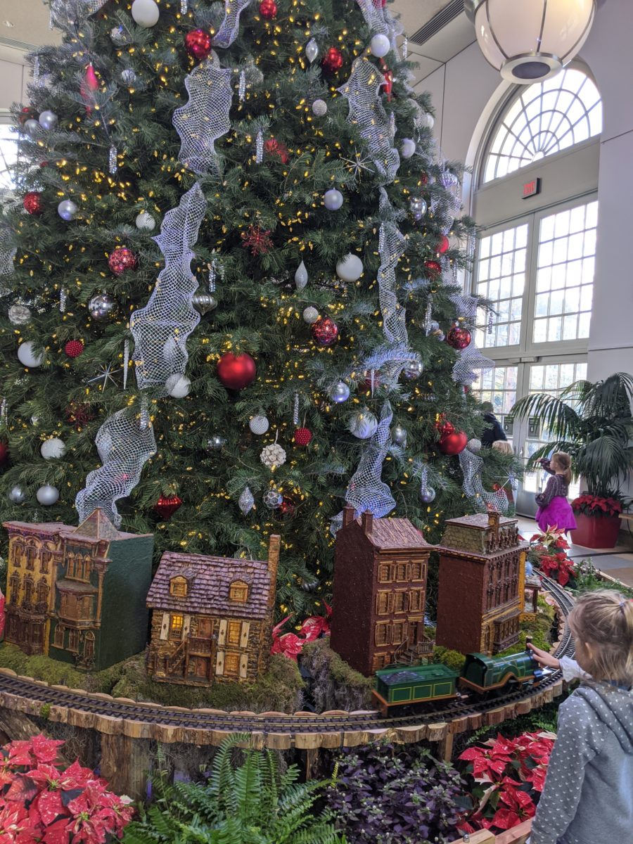 The West Gallery of the United States Botanic Garden features an impressive Christmas tree