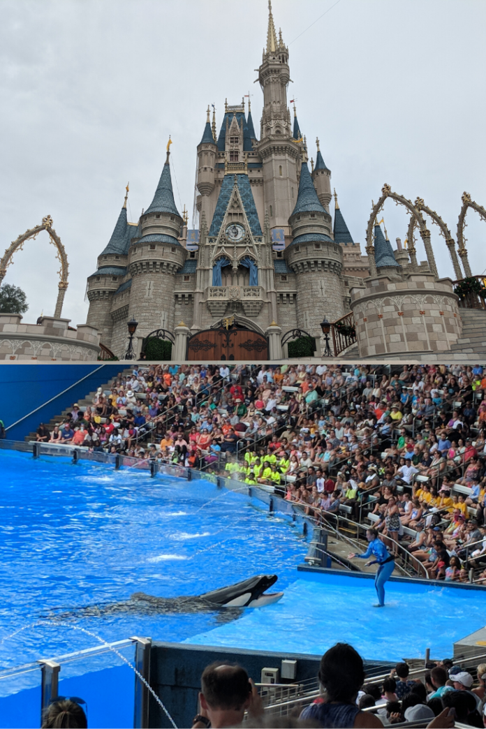 Win a stay at Hilton Orlando, free airfare, & tickets to Walt Disney World or SeaWorld