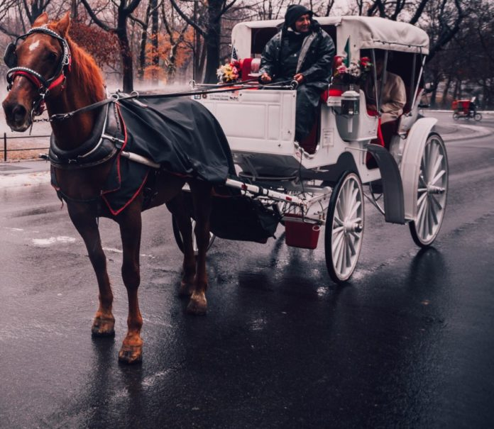 Coupon code for Santa Fe Carriage rides in Oklahoma City
