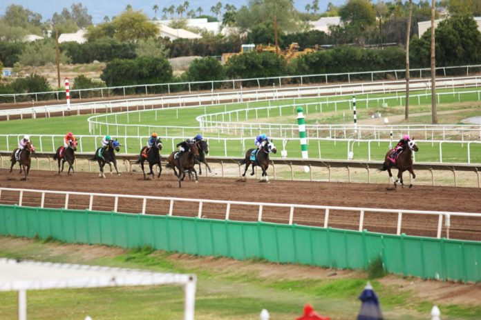 Racing Packages At Turf Paradise In Phoenix promo code