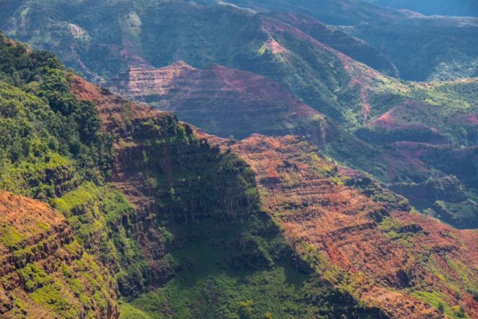 Save money on Hawaii sightseeing tour with coupon