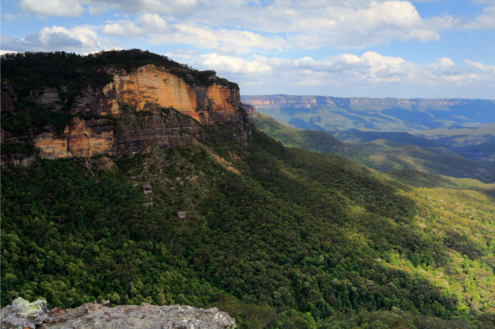 Experience the beauty of the Blue Mountains on a private luxury tour