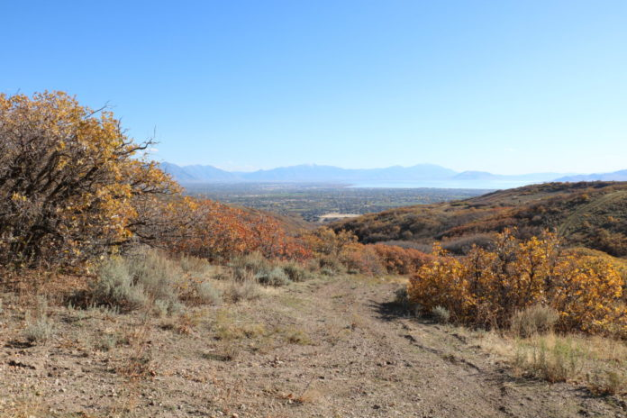 Utah Lake and Mt Nebo can be seen from the Draper Alpine Road as oak leaves show their fading fall colors in late October in the Wasatch Mountains of Utah. See it on a motorcycle tour