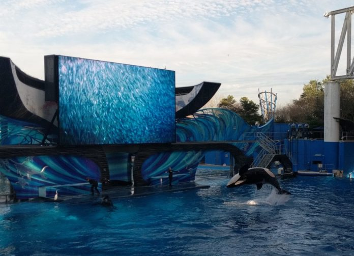 Discounted date-specific tickets for SeaWorld Orlando & Aquatica Orlando
