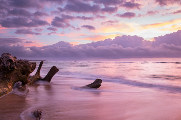 Learn about activities, hotel deals near Lydgate Beach Park In Kauai, Hawaii