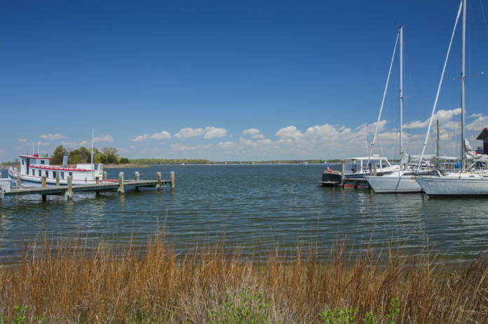 Take a relaxing 2 hour cruise on the Selina II on Chesapeake Bay. Your cruise wlll depart from the Harbour Inn & Marina in St. Michaels, Maryland.