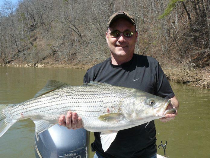 Coupon code for Lake Murray Fishing Charters LLC