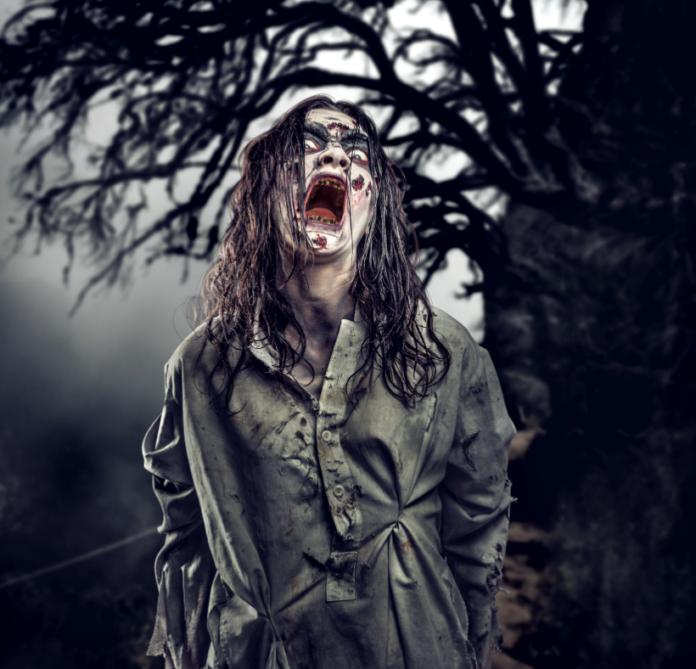 Texas Zombie Hunt Houston Coupon, Promo Code