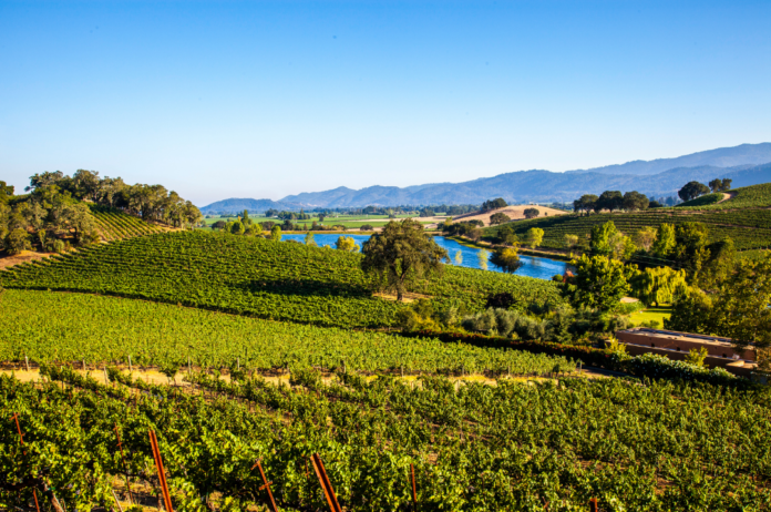 Win A Trip To Napa Wine Country