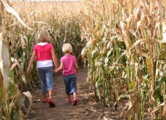 Spartanburg, SC area fall festivities including corn maze discount ticket