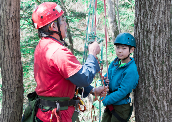 Discount ticket for canopy tree climbing experience in Washington