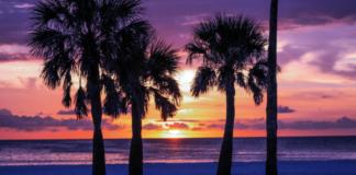 Most loved beach hotels on Florida's gulf coast in Marco Island, St. Pete Beach, Fort Walton, Sarasota, etc.