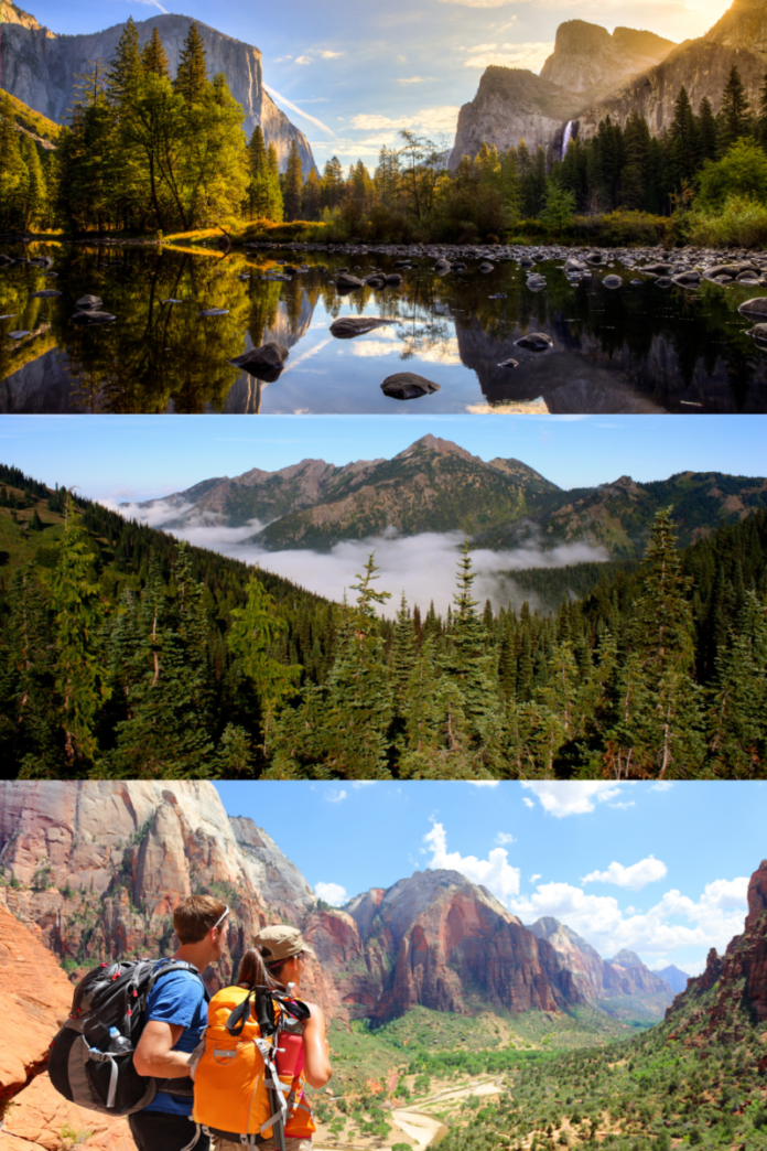 Win 2 passes to Yosemite National Park, 2 passes to Olympic National Park, 2 passes to Zion National Park and $1,000 for travel