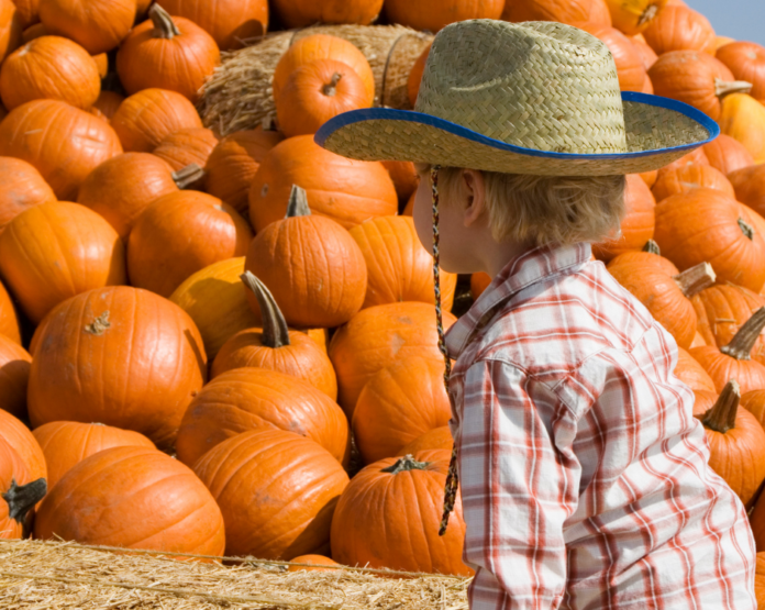 Save money when visiting Pipe Creek Pumpkin Patch for fall activities