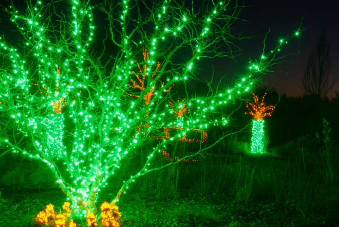 Discount ticket to Winter Illuminations, a Christmas light walk-through event in Louisville, Kentucky