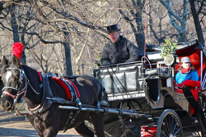 Promo code, discount price for Christmas Lights New York City Central Park Carriage Ride