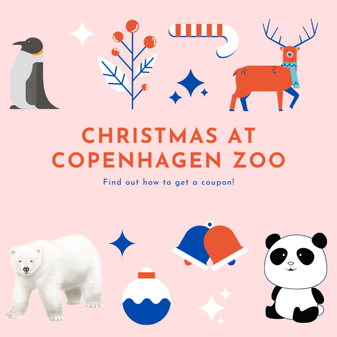Guide to enjoying Christmas at the Copenhagen Zoo, and learn how to get discounted skip-the-line tickets