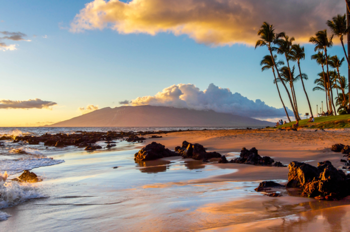How to win a free trip to Maui includes airfare expenses & hotel