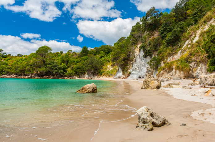 Coromandel, New Zealand holiday information learn of excursion, activities, how to save money on hotels