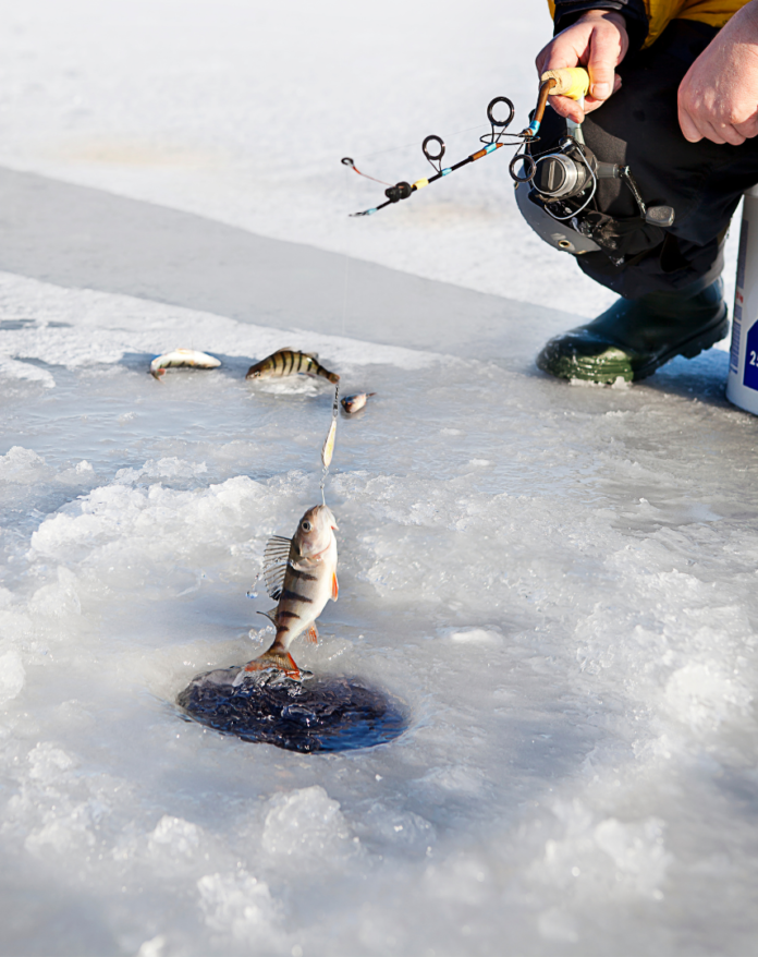 Discount price for Private Ice Fishing Trip In Luxemburg, Wisconsin