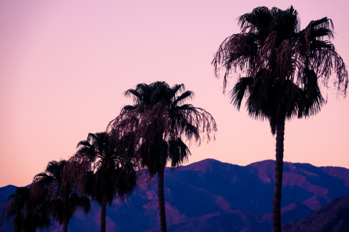 How to win a free vacation in Palm Springs, Califronia
