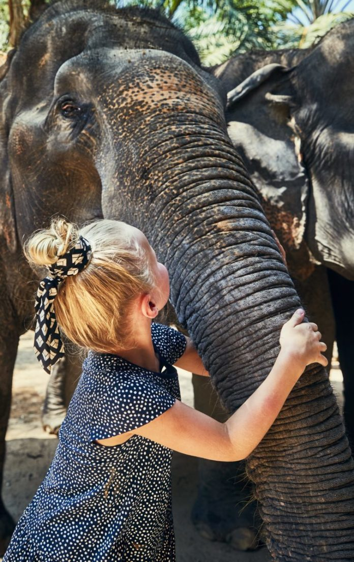 Coupon, promo code for Asian Elephant Encounter in Hugo, Oklahoma