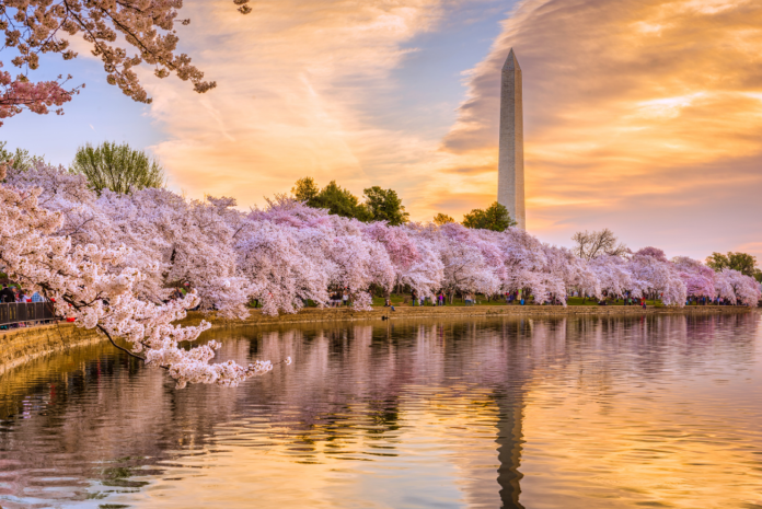Cheap rates under $100/night for Washington DC hotels