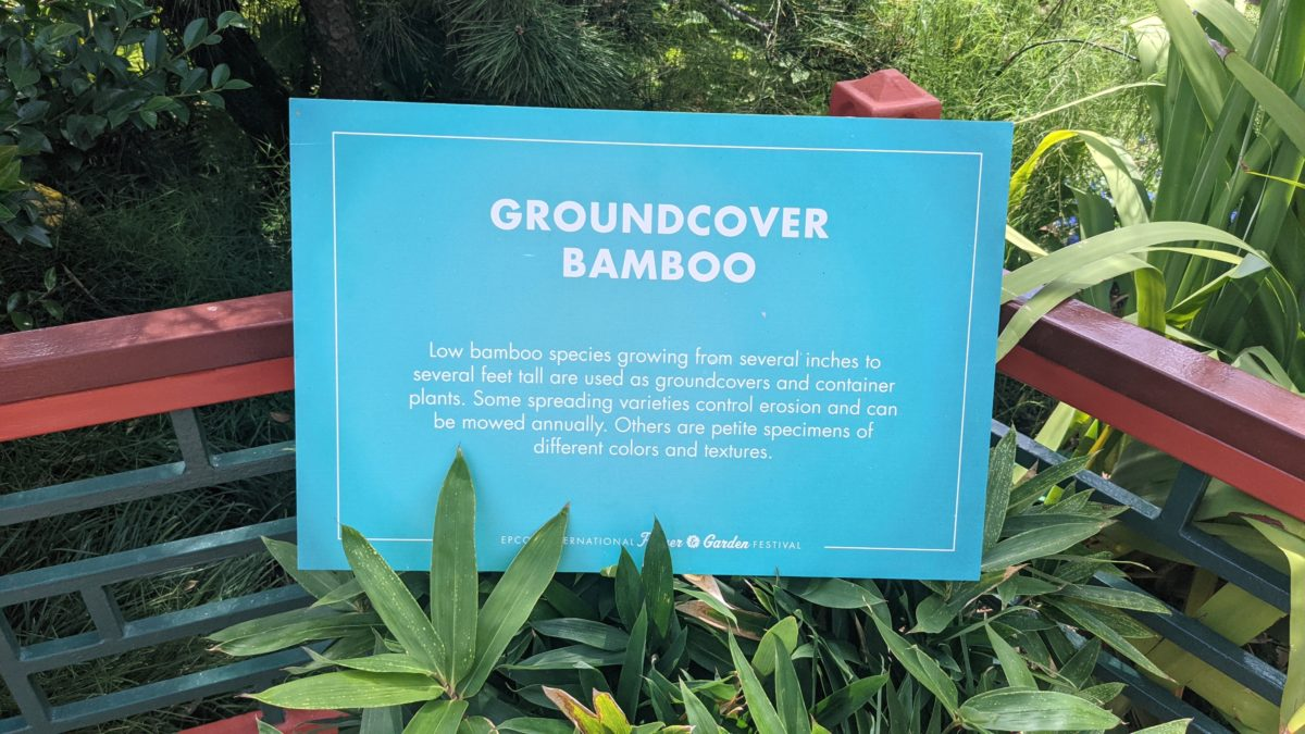 The bamboo garden at the China Pavilion of Epcot at Disney World's Flower & Garden Festival