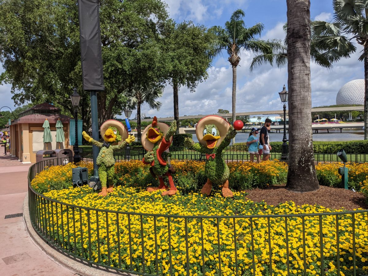 See Donald & the other Caballeros at Mexico at Epcot in Disney World at the International Flower & Garden Festival