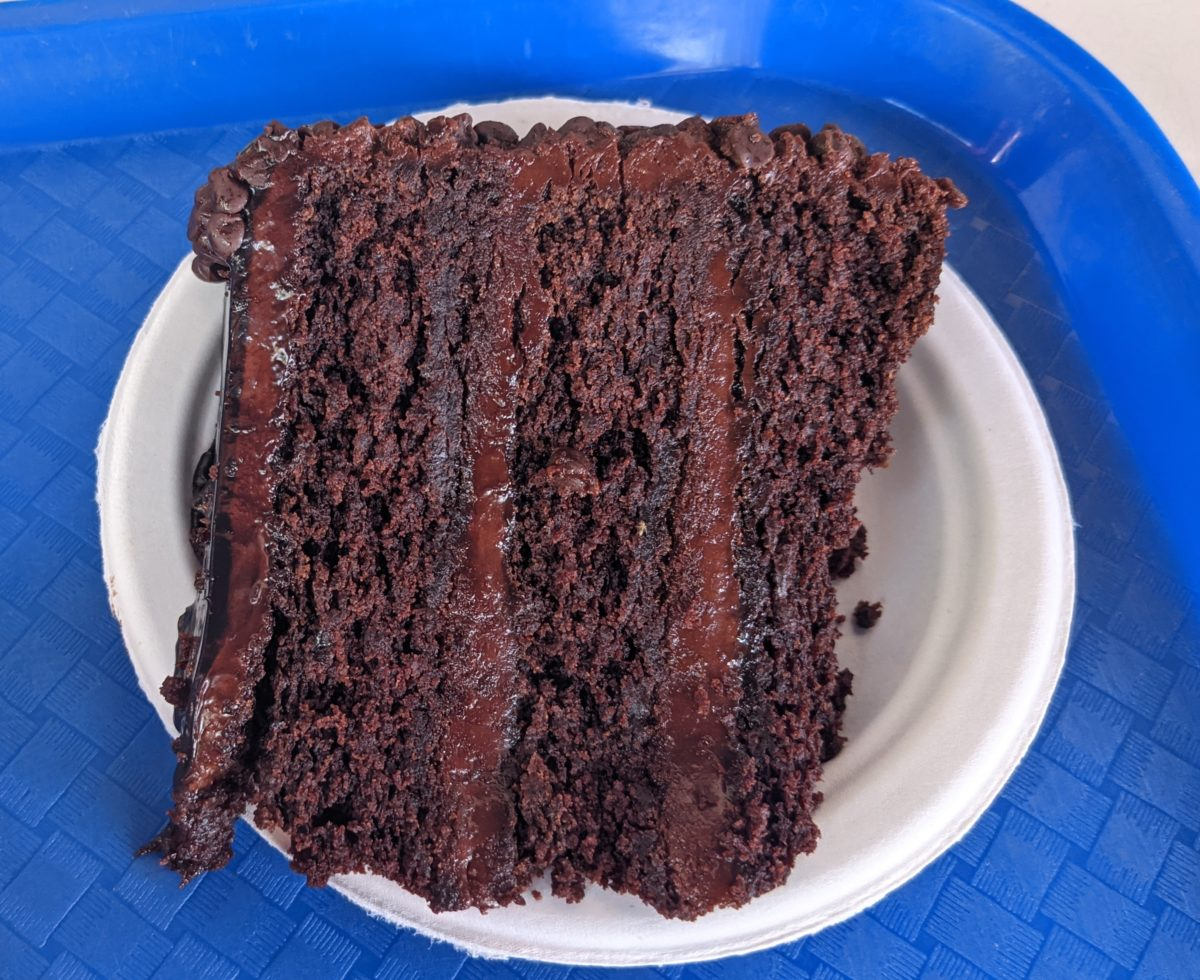 A picture of the chocolate cake you can get at Altitude Burger. You can get a dessert in your All Day Dining Pass at SeaWorld Orlando.