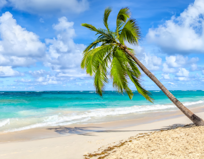 How to win a free trip at the Hard Rock Hotel & Casino in Punta Cana in the Dominican Republic