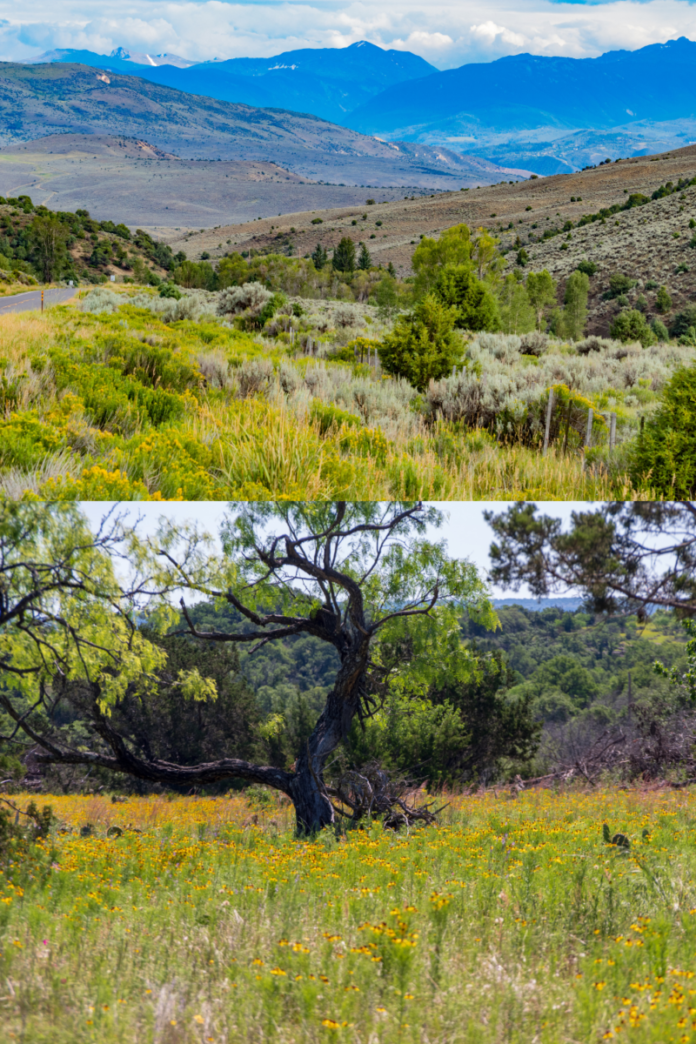 How to Win A Trip To Hill Country, Texas, Or Hill Wolcott, Colorado