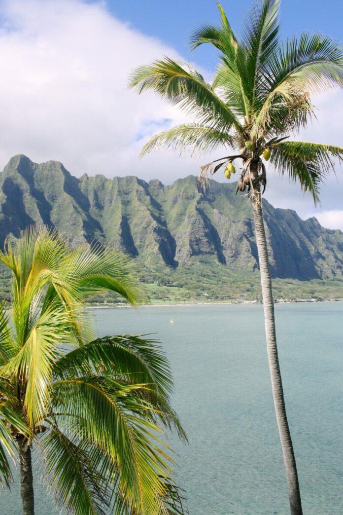 Enter Wet n Wild - Win A Tropical Getaway to win a Hawaiian vacation worth $3,000.