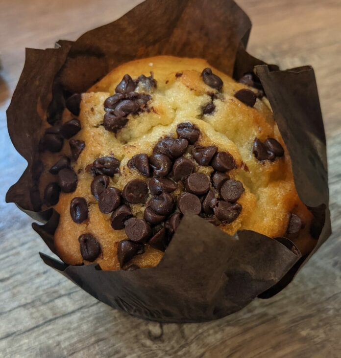 Coaster Coffee Co at SeaWorld has delicious muffins and pastries for sale