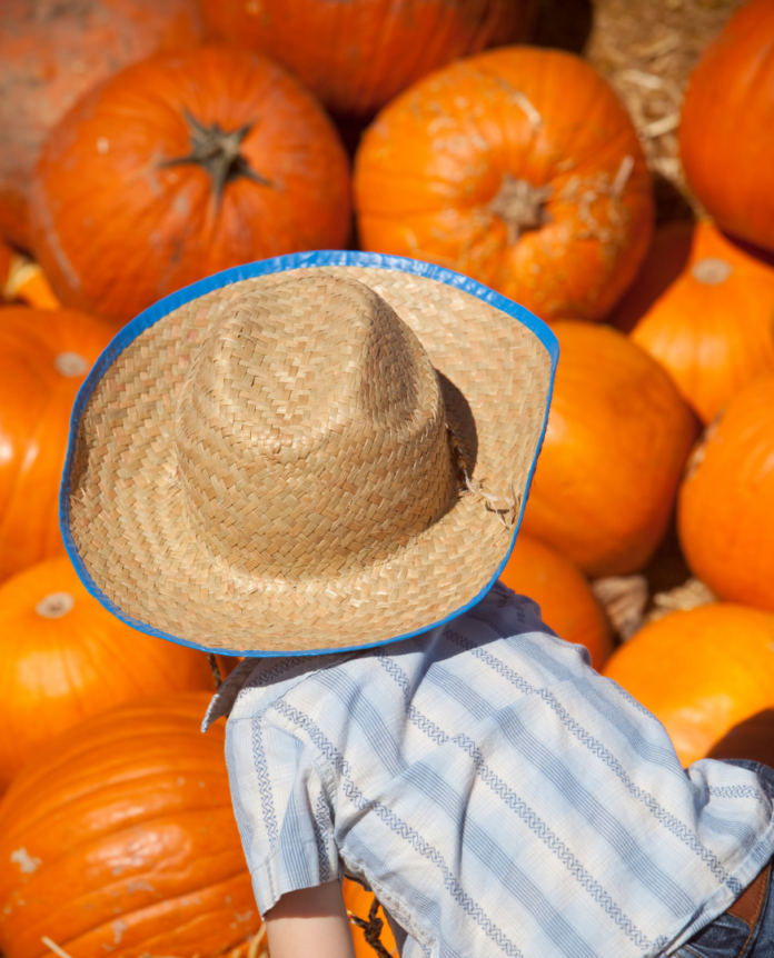 Discounted admission to the Fall Farm Bash at Bankersmith Texas in Fredericksburg, TX