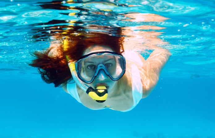 Kayaking & snorkeling tour in San Diego, California discount price