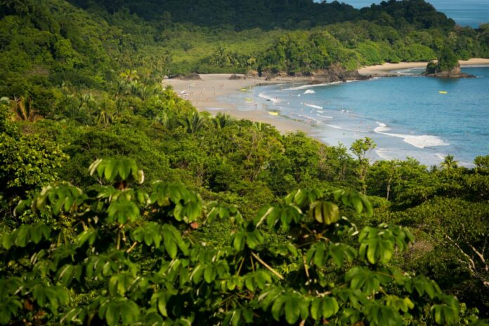 Enter Rebel - National Hard Coffee Day Sweepstakes to win a vacation in Costa Rica