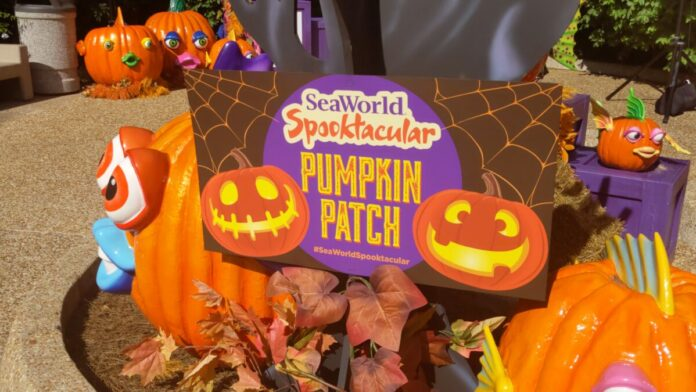 A guide to SeaWorld Spooktacular in Orlando what you need to know before you bring your kids to this Halloween event