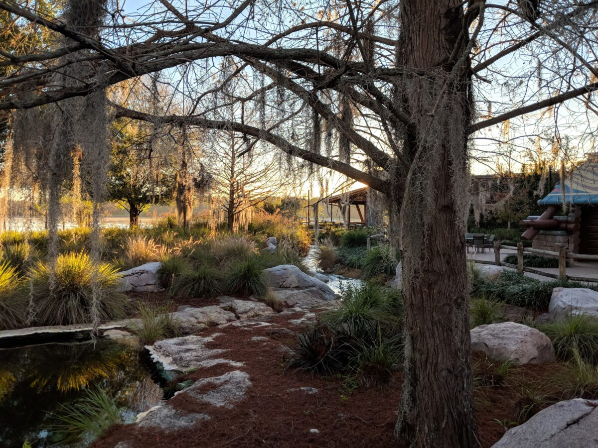 My family loves the nature & outdoor atmosphere of Wilderness Lodge at Walt Disney World Resort