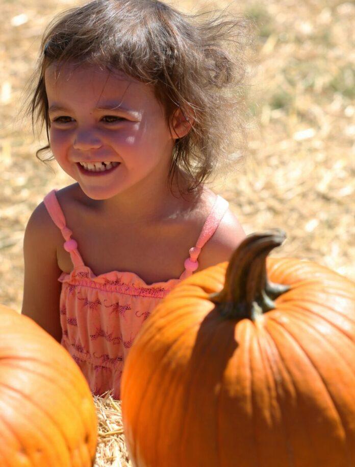 Discount ticket to Pa's Pumpkin Patch in Long Beach enjoy petting zoo, kiddie rides & pumpkins