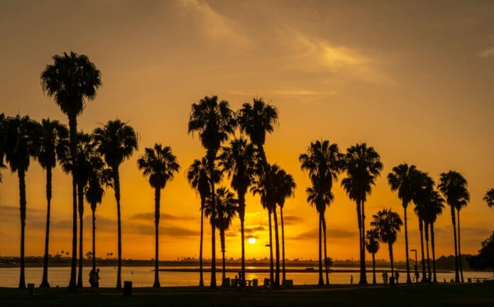 Enter Tillys - San Diego Skate Sweepstakes to win a free Southern California vacation