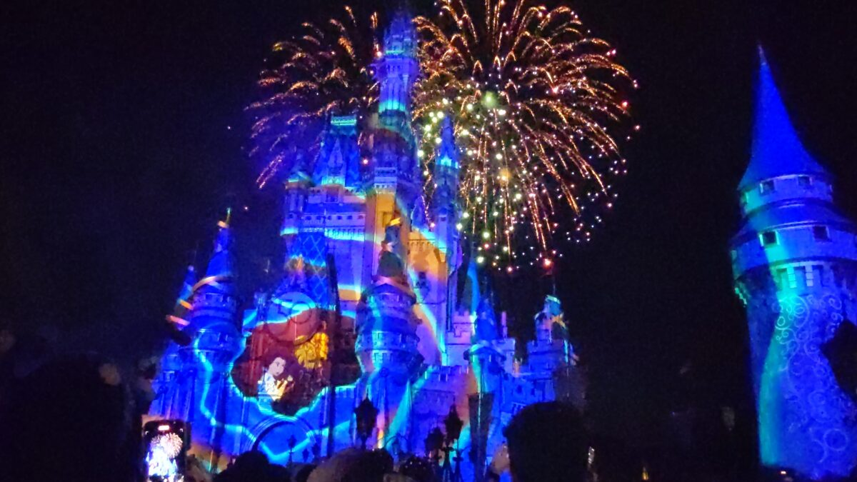 We love seeing Belle & other Disney princesses at the Magic Kingdom 50th Anniversary Fireworks Show
