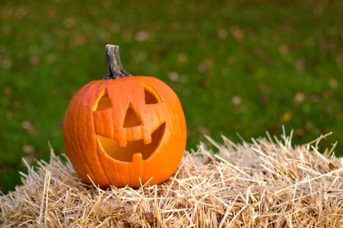 Discounted ticket to Winchester Mystery House Jack'O'Lantern Trail in San Jose, California