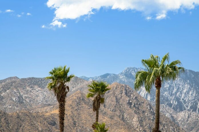 Enter AriZona SunRise - Palm Springs Flyaway Sweepstakes for a free trip